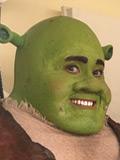 bagg-Shrek